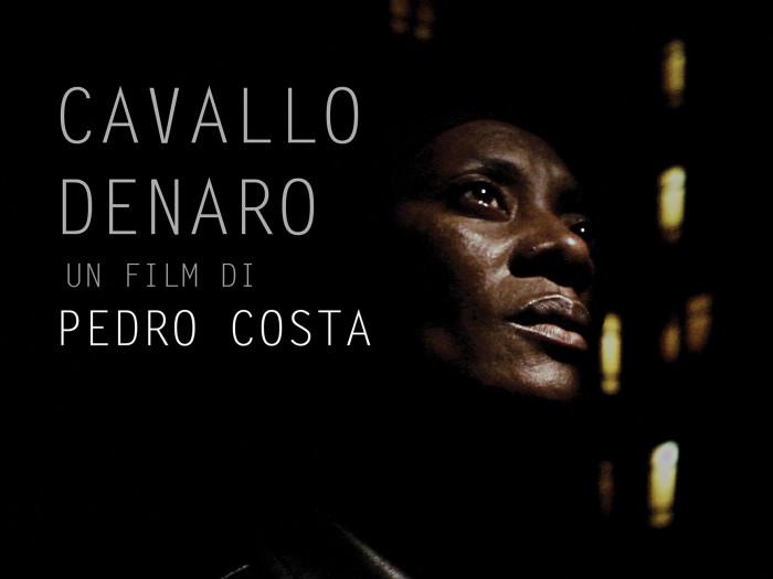 CAVALLO DENARO PICC